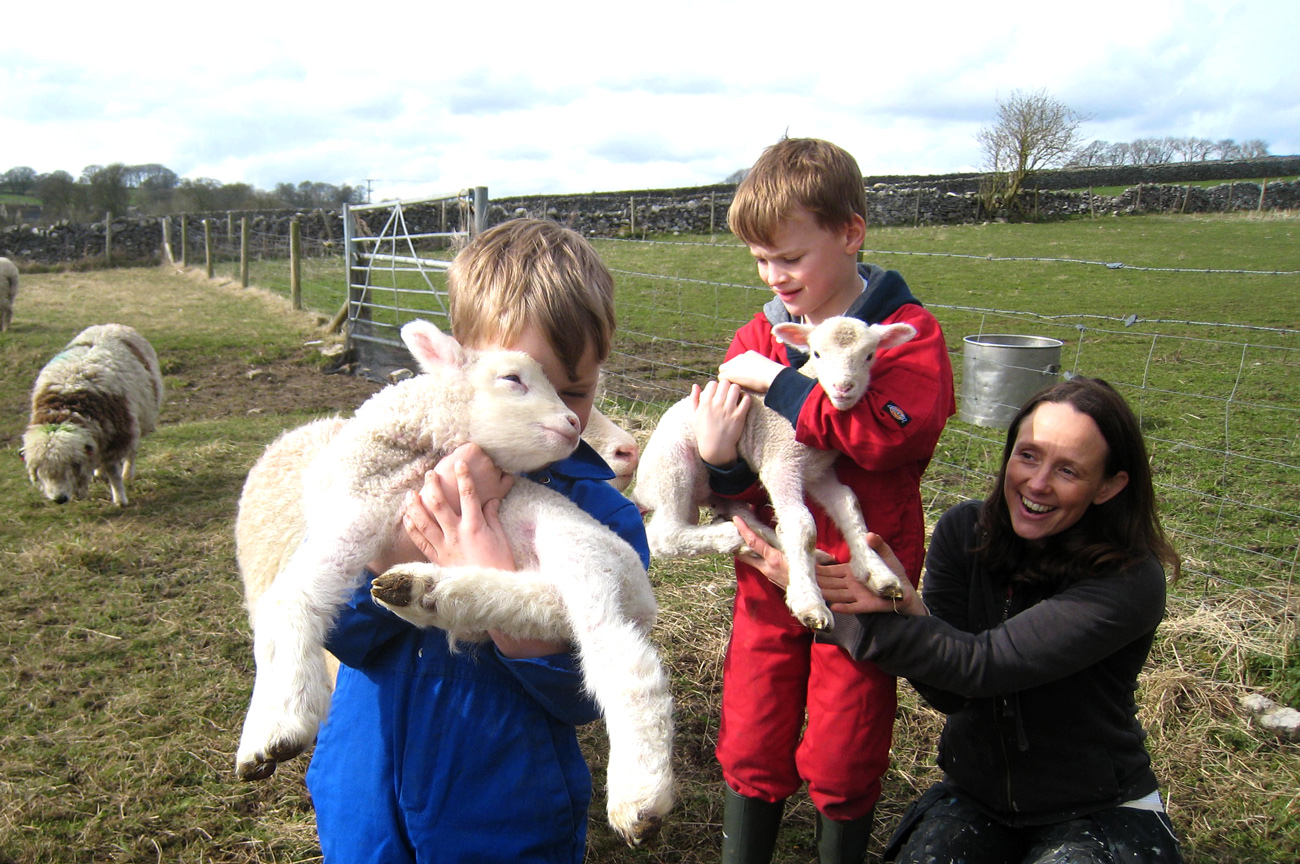 Boys-and-lambs